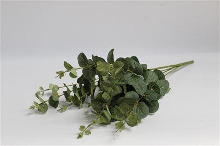 Silk Bush05 Eucalyptos L60cm thumbnail